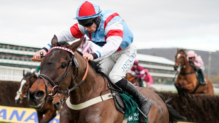 Simply The Betts: Paddy Power Gold Cup preparation has gone well