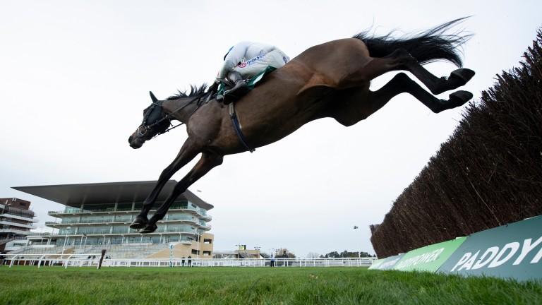 Protektorat: put in a fine round of jumping under Harry Skelton