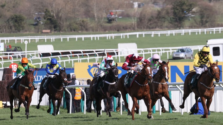 British and Irish hurdlers and chasers between the ages of three and five will benefit from the same allowances at next year's Cheltenham Festival
