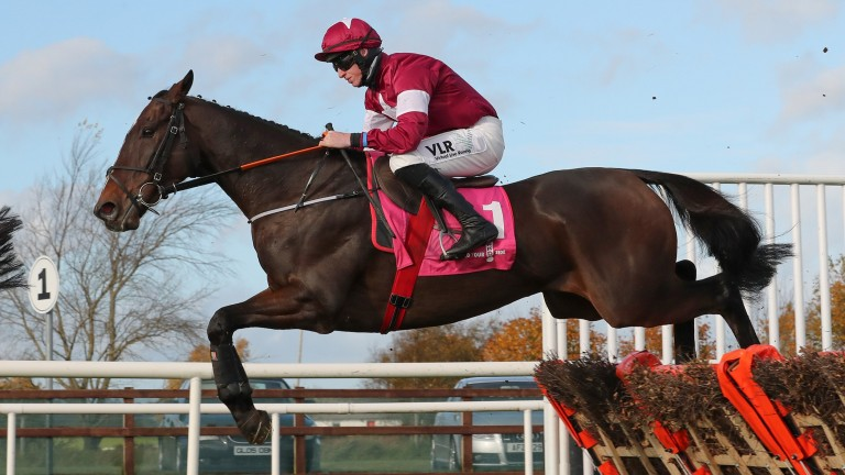 Abacadabras: second in the WKD Hurdle on his return at Down Royal