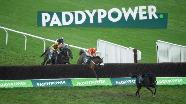 Coole Cody (Tom O'Brien) leads over the last fence and wins the Paddy Power Gold Cup ChaseCheltenham 14.11.20 Pic: Edward Whitaker/Racing Post