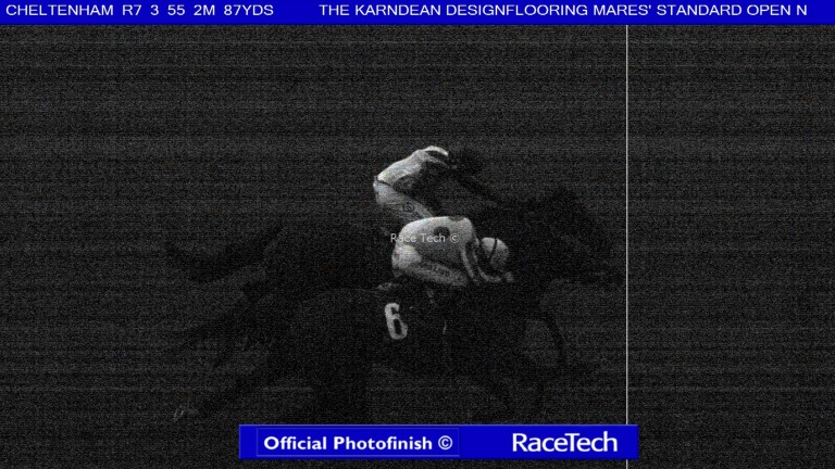 The official photo from the last race at Cheltenham on Saturday