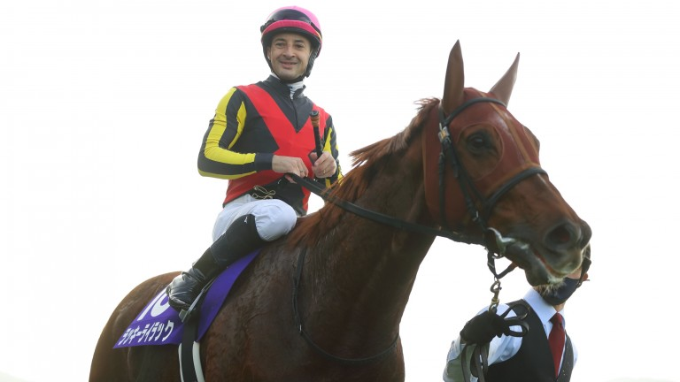 A smiling Christophe Lemaire after Lucky Lilac won her second Queen Elizabeth II Cup