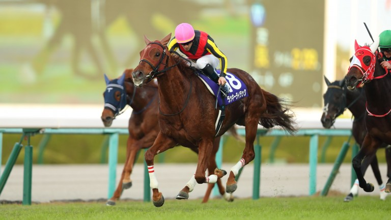 Christophe Lemaire and Lucky Lilac take charge in the Queen Elizabeth II Cup at Hanshin
