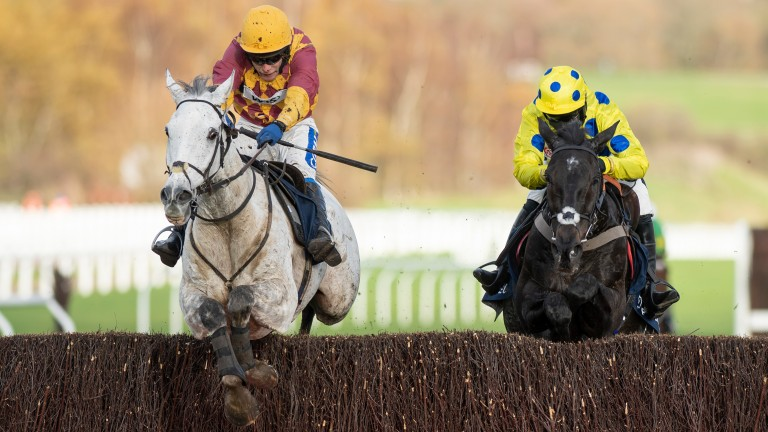 Ramses De Teillee (left) could be a live contender for the Grand National next April