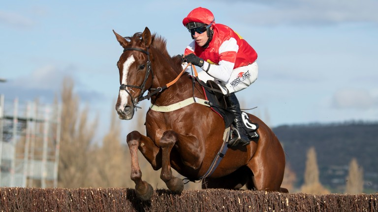 The Big Breakaway: could he upset Monkfish in the Brown Advisory Novices' Chase?