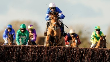 WINCANTON, ENGLAND - NOVEMBER 19: Harry Cobden riding Tamaroc De Mathan (blue/pink) clear the last to win The Visit racingtv.com Novices' Limited Handicap Chase at Wincanton Racecourse on November 19, 2020 in Wincanton, England. Owners are allowed to atte