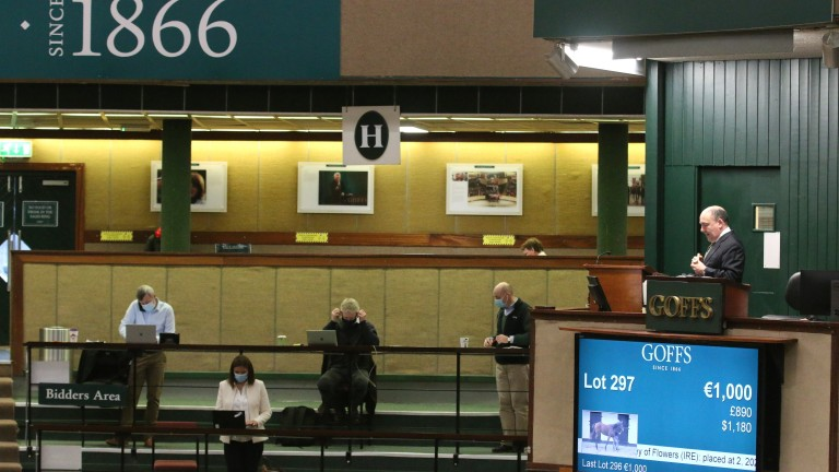 Online bidding has become a necessity in thoroughbred auctions over the last year