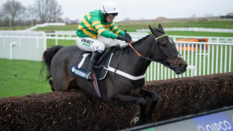 Chantry House (Nico de Boinville) jumps the last on his way to winning on his chase debut