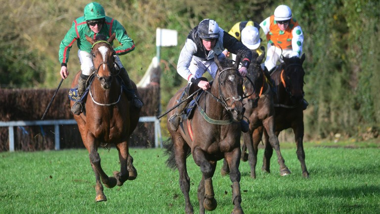 Folcano: won his point-to-point at Tinahely in January