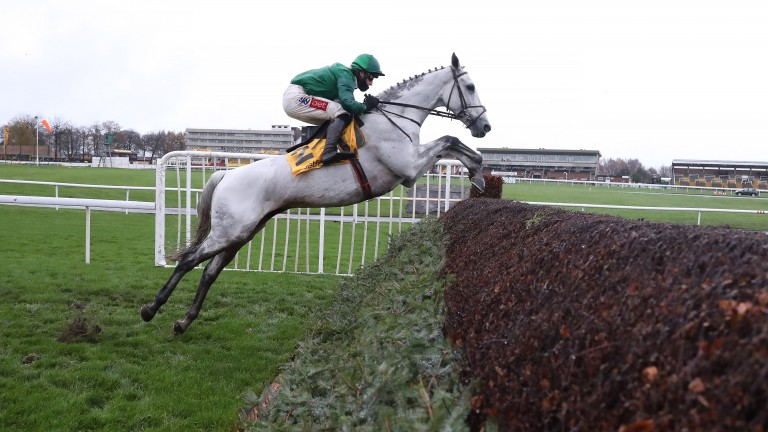 Bristol De Mai with another superb jump in the Betfair Chase