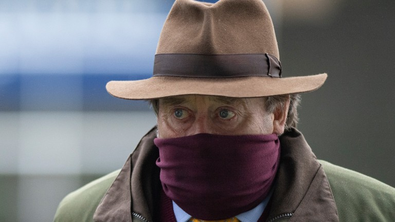 Nicky Henderson: Caribean Boy could be one of the trainer's runners in a big week