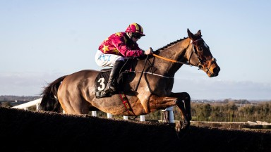 Minella Indo and Rachael Blackmore clearing the last fence at Navan