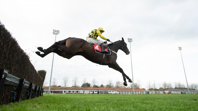 Shishkin puts in a flying leap at the second-last at Kempton on Monday
