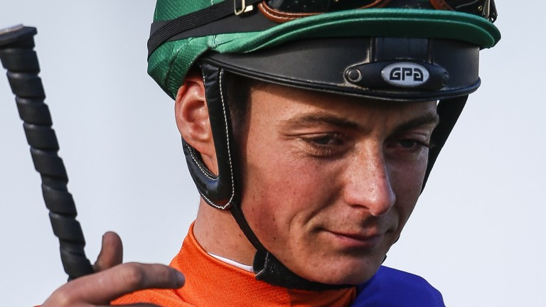 Eoin Walsh: sidelined after bad fall at Chelmsford on Monday evening