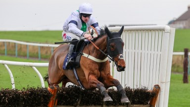 C'EST LE BONHEUR and Brian Hughes win at Sedgefield 24/11/20Photograph by Grossick Racing Photography 0771 046 1723