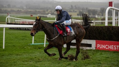 The Ballymore Group Rated Novice Chase won by Colreevy and Paul Townend.Punchestown Racecourse.Photo: Patrick McCann/Racing Post 24.11.2020
