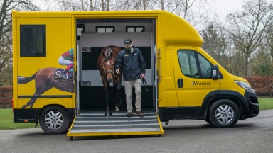 Without Parole steps off the lorry at Newsells Park Stud