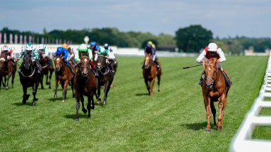 Golden Horde (right) storms to success in the Commonwealth Cup