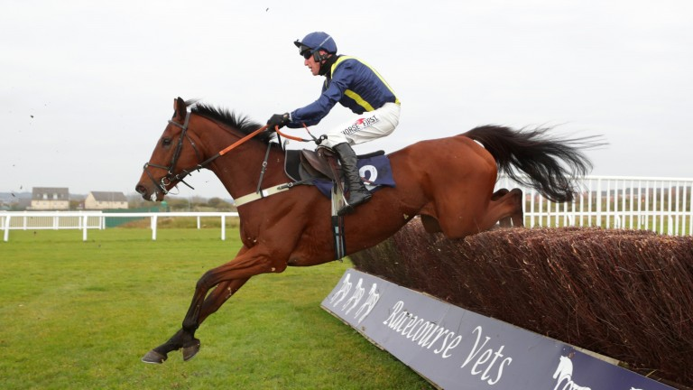 Fidderontheroof: has made a slightly underwhelming start to his chasing career
