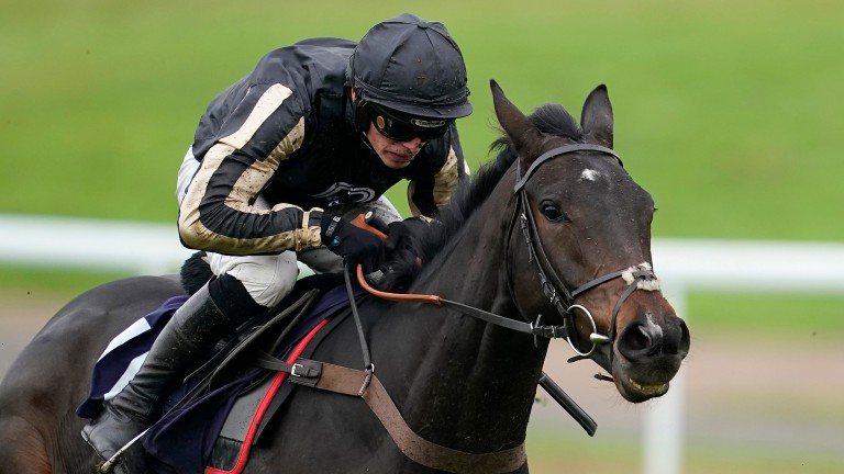 McFabulous: needs to turn around form with Brewin'upastorm