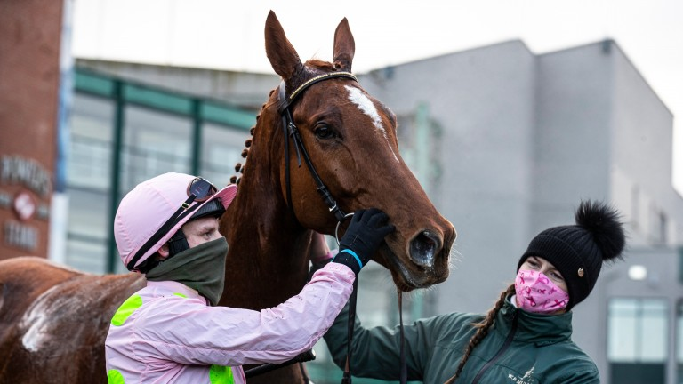 Monkfish is the centre of attention after winning the opening race at Fairyhouse