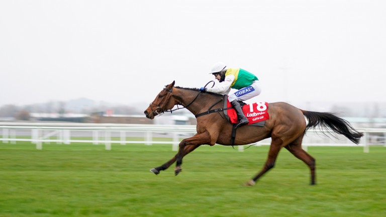 Cloth Cap: favourite for the 2021 Grand National