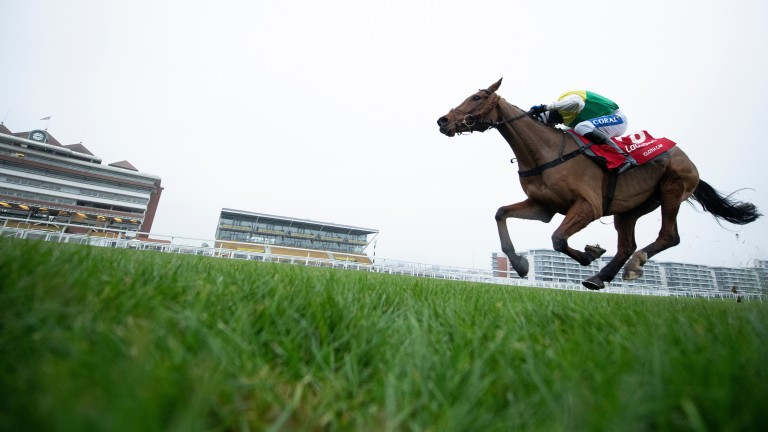 Does hot favourite Cloth Cap have what it takes to win the Grand National on Saturday?