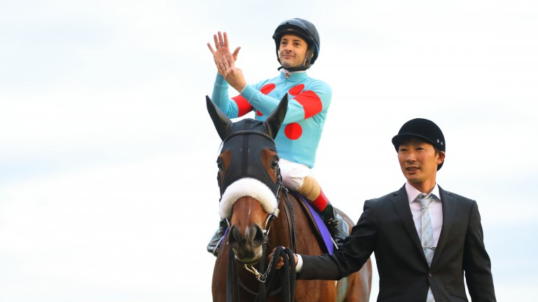 Almond Eye: the daughter of Lord Kanaloa bowed out of a brilliant racing career on Sunday