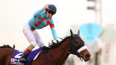 Top of the world: Christophe Lemaire salutes Almond Eye after winning a second Japan Cup