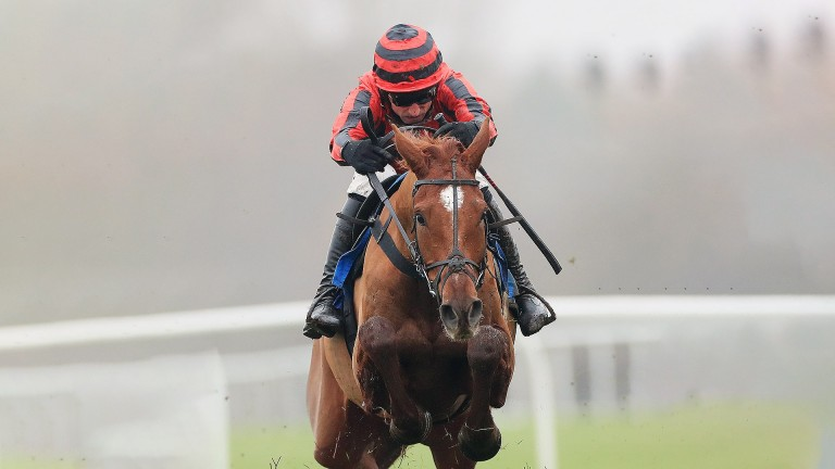 Midnight River on his way to recording his second success for Dan Skelton at Leicester