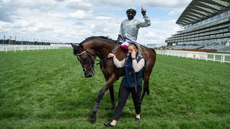 Palace Pier: Queen Anne favourite and star miler won last year's St James's Palace Stakes