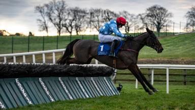 Costalotmore: landed a gamble at Limerick
