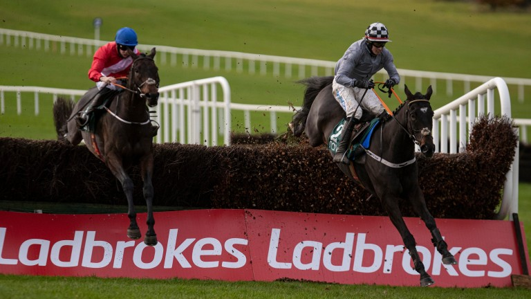 Castlegrace Paddy (right): edged out A Plus Tard (left) in last month's Tote Fortria Chase