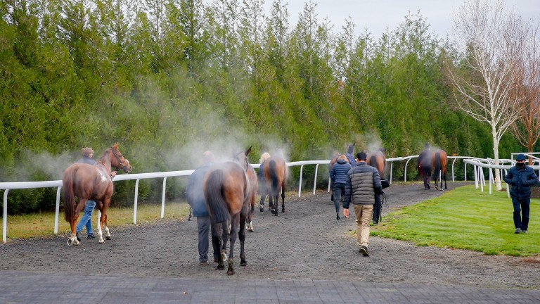 Unplaced runners walking back to the stables at Lingfield on the day racegoers were allowed back on course