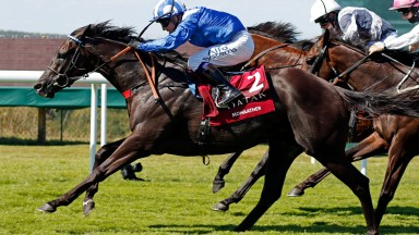 Mohaather: Sussex Stakes hero joins the Nunnery Stud roster for 2021