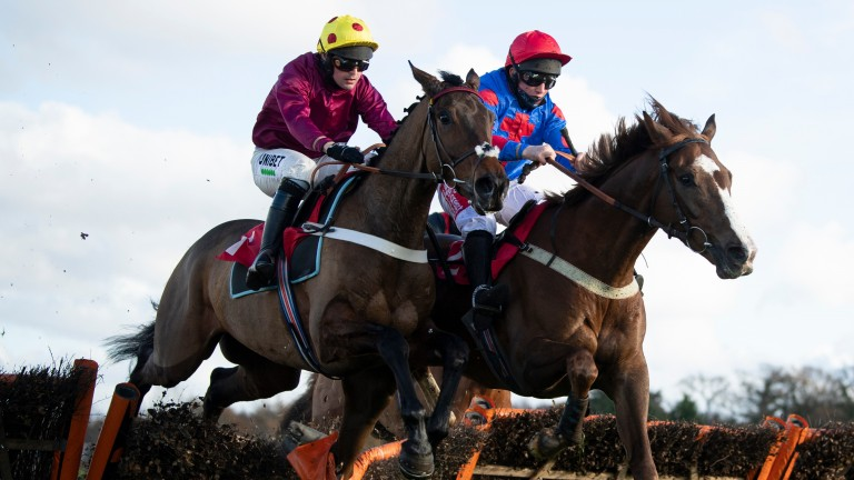 Golden Boy Grey (Jamie moore,right) jumps the final flight and beats Grand Mogul (Nico de Boinville) in the 2m NH Novices' HurdleSandown 5.12.20 Pic: Edward Whitaker/Racing Post