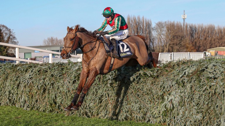 Vieux Lion Rouge: Saturday's Becher winner is a 50-1 chance for the 2021 Grand National with Betfair Sportsbook