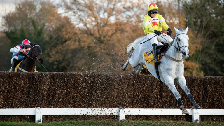 Politologue clears the second-last fence in the Tingle Creek Chase at Sandown last time