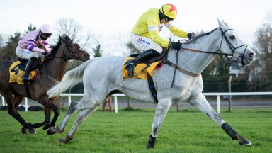 Politologue (Harry Skelton) runs on from the 2nd last fence and wins the Tingle Creek Chase beating stable mate GreaneteenSandown 5.12.20 Pic: Edward Whitaker/Racing Post