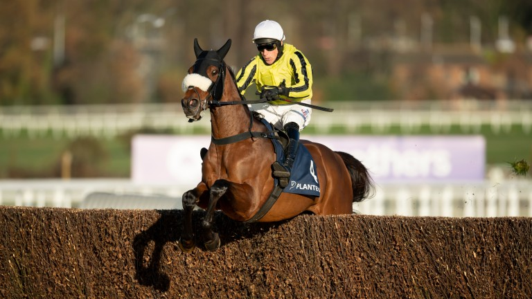 Allmankind (Harry Skelton) jumps the last fence and wins the Henry VIII Novices' Chase
