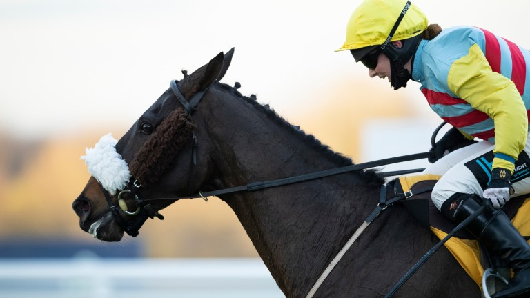 Doing Fine (Millie Wonnacott) wins the London National Sandown 5.12.20 Pic: Edward Whitaker/Racing Post