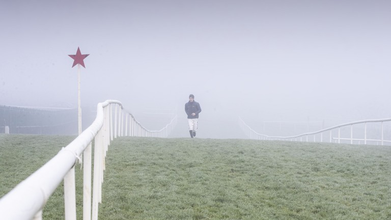 Thick fog has forced the abandonment of meetings at Punchestown and Chelmsford in recent days