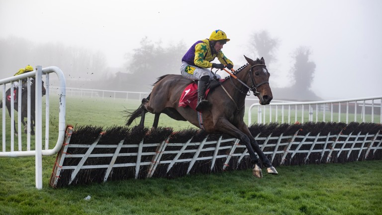 Skyace jumps the last under Jody McGarvey on the way to Listed success at Punchestown