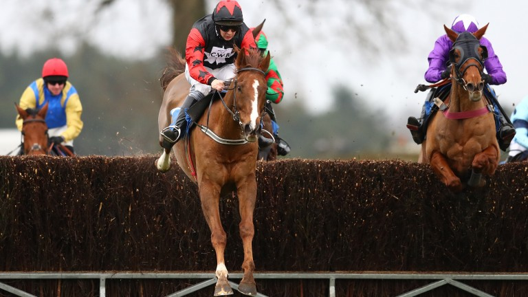 Callum McKinnes, pictured here at Ludlow, was found to have deliberately failed to ride a horse on its merits