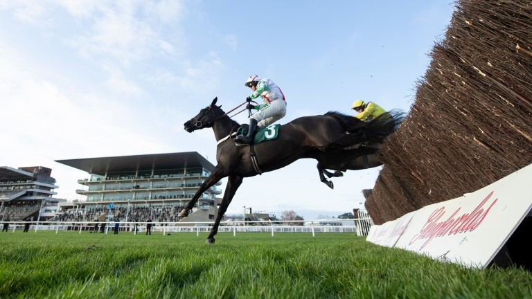 The selection's form ties in with Peterborough winner Mister Fisher