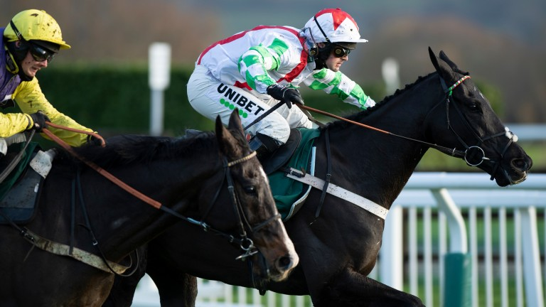 Peterborough Chase winner Mister Fisher heads for home, with Kalashnikov in hot pursuit