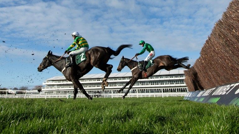 Fusil Raffles (right) follows stablemate Chantry House over the second-last fence at Cheltenham. The winner overhauled the leader Lieutentant Rocco up the run-in