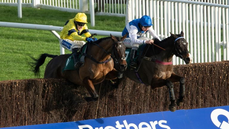 Sky Pirate (left): early favourite for the Grand Annual Handicap Chase