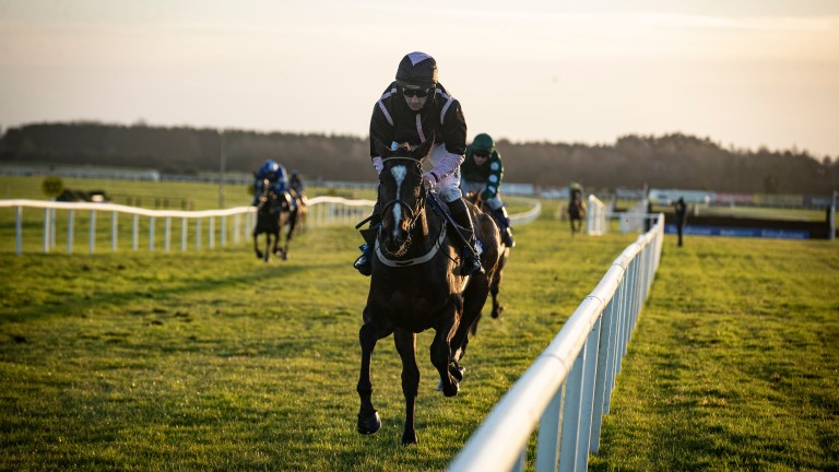 Brandy Love: the £200,000 purchase and point winner ran out an impressive winner of her bumper at Fairyhouse on Saturday